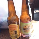 micro brewery beers