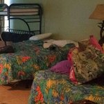 2 Double Beds & Futon w/ Bunk Bed
