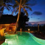 Palm Garden Amed by night