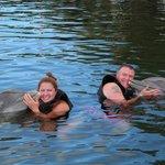 Dolphin Cove Key Largo août 2014