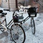 P Calaf B&B bikes