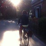 Le bici dell'Hotel