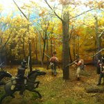 Skirmish in the woods