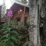 The Beautiful Orca Lodge