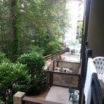 View from second floor creekside room.