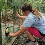 Feeding all different types of animals was great