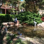 Courtyard with koi pond
