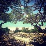 our beachfront paradise