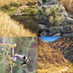Hiking with Hells Canyon Raft