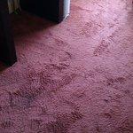 lovely carpet ha
