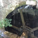 The Water Wheel