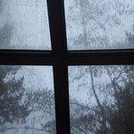 Detalle ventana domo