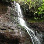 Pwll-y-wrach waterfall