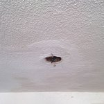 plafond couloir