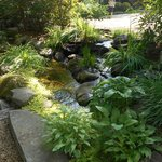 Beautiful Water feature on the property