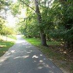 road near golf course
