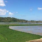rice fields hike