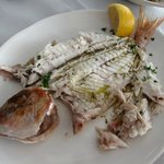 Red Snapper (500g)