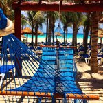 Hammocks in the Adult Only Beach Section
