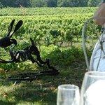 Humphrey's vineyard complete with wine label sculpture!