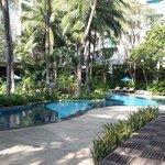 piscine lagon