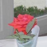 rosa sobre a mesa do restaurante