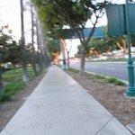 The walk to Disney