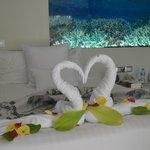 Arreglo de cisnes de toallas hecho por Yahaia de Jesus