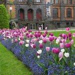 Public parks-gardens in Bergen