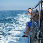 Яхта  (в Turan Prince World)