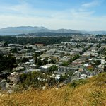 View north from Tank Hill, toward Golden Gate Park and Marin County