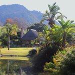 """Garden and """"Lapa"""" area"""