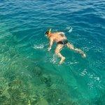 Коралловые рифы в конце понтона