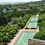 Vista de los jardines desde la torre
