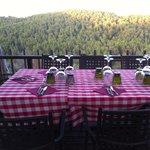 La cena in mezzo ai boschi