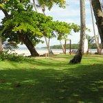 zona de césped & playa