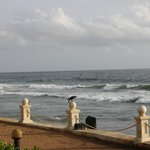dashing waves