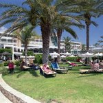 Sun lounger lawns at rear of hotel