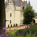 Château d 'Amboise