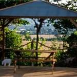 Outdoor gazebo for alfresco dining