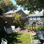 The Old Tea House's Garden