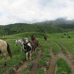 Horseback Riding to First Zip Line Platform