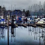 Ucluelet marina, where Waters Edge is