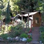 Cabin 12A