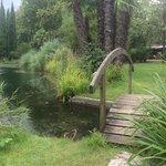 The small bridge on the pond