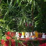 Jardin - petit déjeuner servi de 7h à midi