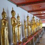 Lining Buddhas
