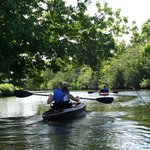 Palm Bay Kayaks Eco Tours