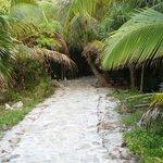 Start of the walk way to salt water pool