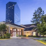 Homewood Suites by Hilton Houston - Westchase Foto